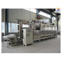 Quality 304 Stainless Steel Nut Roasting Equipment , Cashew Nut Roasting Processing Line wholesale
