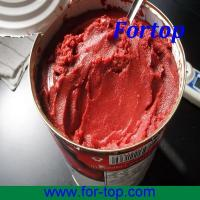 Quality Canned Tomato Paste Brix 28-30% wholesale