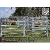 China China 1.6m high Corral Panels (Supplier) | oval pipe Horse Fence Panel on sale
