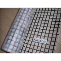 Cheap Fiberglass Geogrid Composite Geotextile for sale