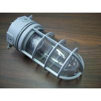 China TOPELE Energy Saving Outdoor Aluminum Vapor Proof Lights, Explosion-proof Lights Ip65 For Oil Platform on sale