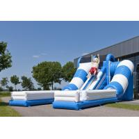 China Blue / White Tunnel Commercial Inflatable Slide Safety Giant Inflatable Slide Rental on sale