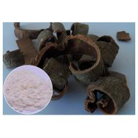 Quality Magnolia Bark Antifungal Plant Extracts Protecting Liver CAS 528 43 8 HPLC Test Method wholesale