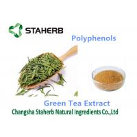 Quality Yellow Brown Powder Antioxidant Powder Supplement Polyphenols 98% Cas 84650-60-2 wholesale