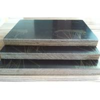 Buy cheap cheap price birch lowes 18mm marine plywood for concrete formwork laminated film faced plywood product