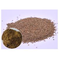 Quality Seed Powder Natural Dietary Supplements Celery Extract For Gout Ratio 10 / 1 wholesale