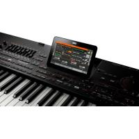 China Korg Pa4X76 76-Key Professional Arranger | Free Shipping & 30 Day Returns‎ on sale