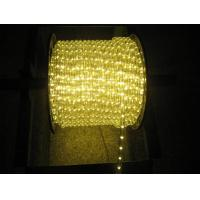China warm white led rope light for Christmas decoration on sale
