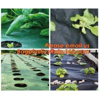 Quality 4 foot wide 1x10m/roll landscape anti weed fabric non woven professional organic strawberry weed control fabric BAGEASE wholesale