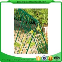 "Quality Deluxe Garden Plant Trellis For Cucumbers , Steel Cucumber Garden Trellis Each side is 32"" W x 48"" H wholesale"