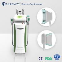 China Vertical Cryolipolysis fat freeze slimming machine for beauty clinic on sale