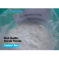 Quality Sustanon Agent Cutting Steroid Testosterone Phenylpropionate Powder for Muscle Strength wholesale