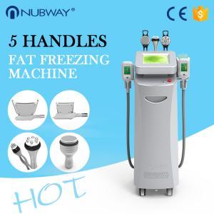 Quality Top Sale Cryolipolysis Machine /Cryolipolysis Fat Freezing Machine /Cryolipolysis Slimming Machine wholesale