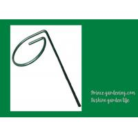 Quality Metal Garden Green Plant Supports wholesale
