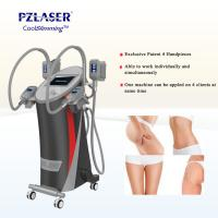 Quality CE Cool Tech Cryolipolysis Fat Freeze Slimming Machine For Weight Loss wholesale