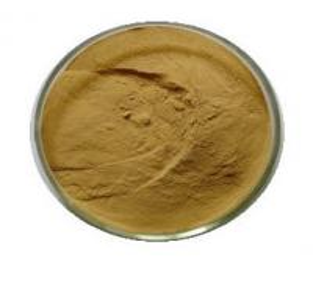 China herbal plant extract Semen Plantaginis Extract/Psyllium Husk extract 10:1 on sale