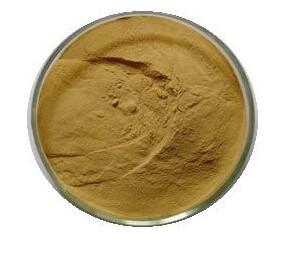 China Psyllium husk Extract,Flea Seed extract,Plantain Seed Extract,Plantain Seed P.E on sale