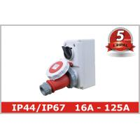 Quality Compact Industrial Power Socket 16A for Electrical Power Distribution wholesale