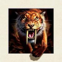 Quality Strong 5d Deep Effect Lenticular Photo Printing 40x40cm Picture Tiger / Wolf wholesale