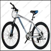 Quality Carbon Fiber Mountain Bike wholesale