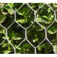 China 3/8 1/2'' 5/8'' 3/4'' 1'' 1-1/4''  1-1/2'' 2'' 3'' 4'' galvanized PVC Coated Hexagonal wire netting for safe fencing on sale