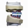 Buy cheap Implant Bridge, Feels Like Your Own Teeth from wholesalers