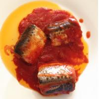 Quality CANNED DOTTED SARDINE PILCHARDS IN TOMATO SAUCE wholesale