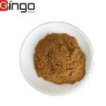 Quality Best herbal plant Extract tribulus terrestris plant saponins powder saponins 40% UV tribulus terrestris powder capsules wholesale