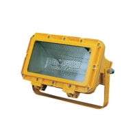 China 250W 400W Flood Lighting 24.5kg CFT2 Explosion Proof Light Fixture on sale