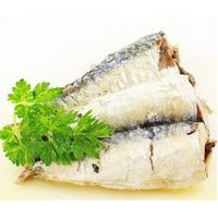 Quality Canned Style and FDA,HACCP,ISO,KOSHER,HALAL Certification sardine fish in can tin wholesale