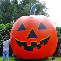 China Inflatable christmas / halloween / inflatable festival decoration / inflatable giant pumpkin on sale