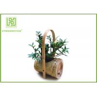 Quality Attractive Indoor Bamboo Flower Pots For Various Succulents Plants wholesale