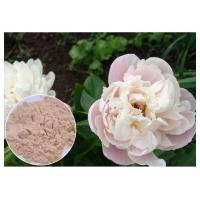 Quality Peony Root Powder Natural Anti Inflammatory Supplements Water Solvent CAS 23180 57 6 wholesale