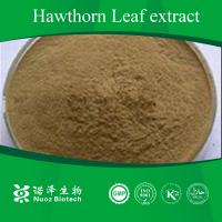 China Digestive food additives healthy Hawthorn Leaves extract on sale