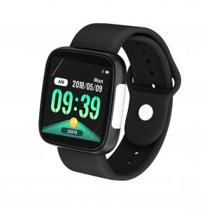"Quality ECG Monitor 1.3"" TFT Screen HS6620 Healthcare Smart Watch wholesale"