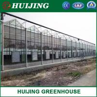 Quality Insulating/Single Layer Toughened/Intelligent/Glass Greenhouse for Flower/Vegetable/Fruit/Planting/Farm/Aquaculture wholesale