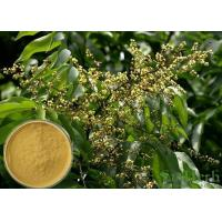 Quality Soapnut Saponin Cosmetic Raw Materials Soapberry Extract For Whitening Spot wholesale