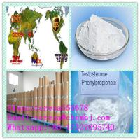 China Anabolic Steroids Hormone White crystalline powder 1255-49-8 Testosterone Phenylpropionate of Preventing Muscle Atrophy on sale