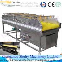 Quality BRUSH CLEANINg machine for carrot/potato/ onion power weight electric onion chopper wholesale