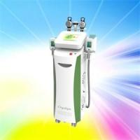 China Crazy Promotion Cryolipolysis Slimming Machine only in September on sale