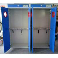 China Steel Storage Gas Cabinets / Two Gas Cylinder Cabinet / Compressed Gas Cylinder Supply on sale