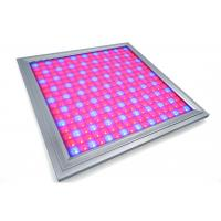 Quality Alluminum Waterproof LED Grow Lights For Vegetables , Indoor Grow Room LED Lights wholesale
