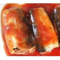 Cheap new product sardine in can with tomato sauce, canned sardine for sale