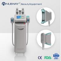 Cheap Best 5 handles cryolipolysis body slimming beauty machine for clinic in advance for sale