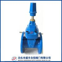 Quality DIN 3352 F4 Resilient Seated Non-Ring Stem Ductile Iron Gate Valve wholesale