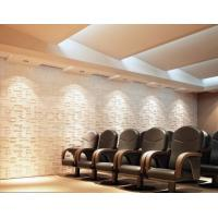 Cheap Plant Fiber Precast 3D Wallpapers for Home Decor , Living Room 3D Object Wall for sale