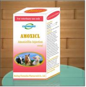 China Amoxicillin Injection on sale