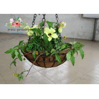 Quality Wall Decor Indoor Hanging Flower Baskets , Round Hanging Plant Holders wholesale