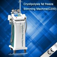Quality Newest Zelitq Cryolipolysis Fat Dissolved Machine With Cold Wave Cooltherapy Beauty wholesale