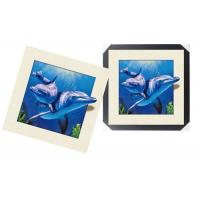 Quality Modern 3d Custom Lenticular Printing With PS Frame , 5d Deep Effect Photos wholesale